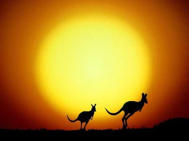 Туры в Сидней, Австралия