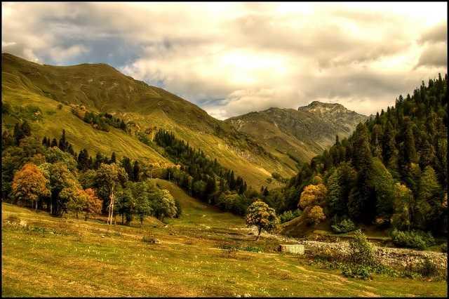 Село Псху