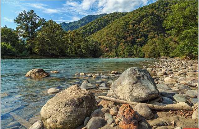 Рицинский национальный парк. Что посмотреть в Абхазии.