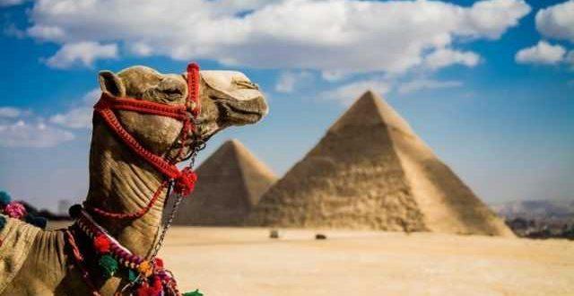 когда откроют египет